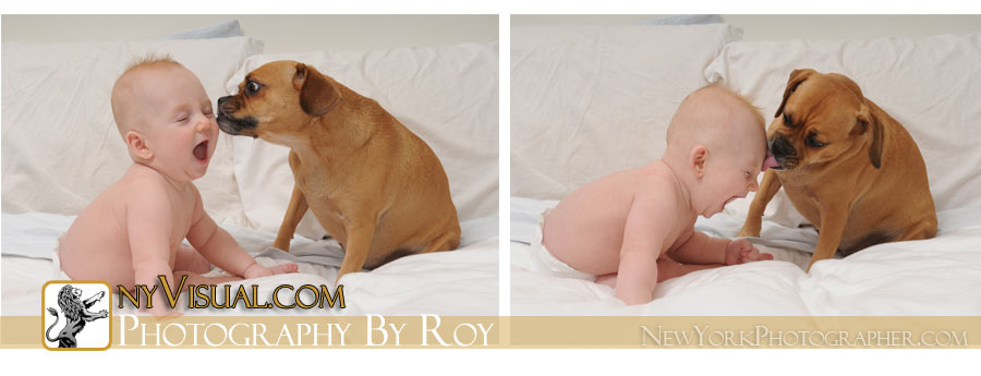 Baby Photographer, NYC.