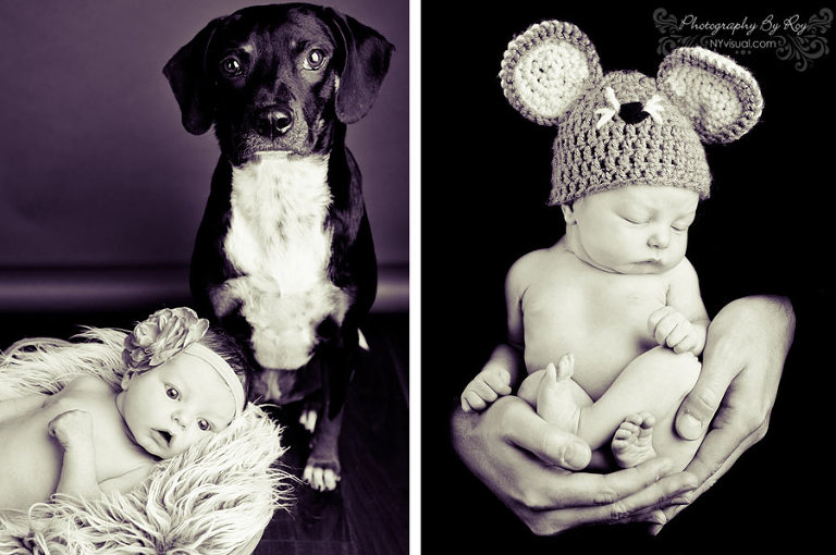 Long Island City Newborn with Dog